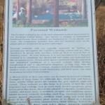 Goose Pond Mountain State Park