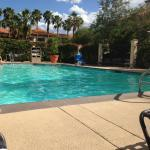 segment of pool area - large pool with jacuzzzzi to side - showers - and central pool service ~
