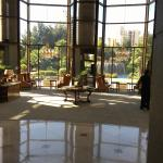 Lobby viewing the garden on a winter sunny day