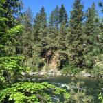 Bindlestiff's Riverside Cabins Foto