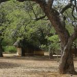 Satara Rest Camp照片