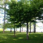 Lugana Parco Al Lago Foto