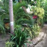 jolie jardin