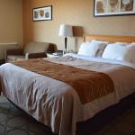 Comfort Inn - Amherst Foto