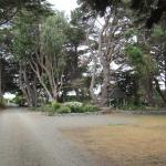 The driveway to Cottage