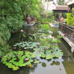 Photo de Villa Hoa Su Frangipani