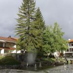 Photo of Hotel Momini Dvori
