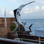 Photo of Costa Palmera Resort