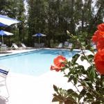 Hampton Inn Charleston - Daniel Island Foto