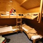 Photo of Camping Hostel Amsterdamse Bos