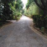 Landscape - Golden Palms Hotel & Spa Photo