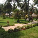 Golden Palms Hotel & Spa Photo