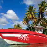 Depuis mai 2016 changement d'exploitant pour ce nouveau bateau à Petite-Terre & Marie-Galante