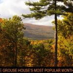 The Grouse House Bed and Breakfast Foto