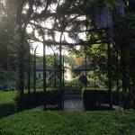 Photo de Park & Tilford Gardens