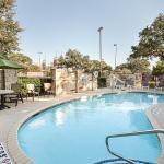 Comfort Suites San Antonio North - Stone Oak Foto