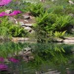Several ponds to enjoy