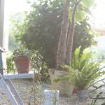 お庭のポスト