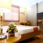 拉科羅納德利帕酒店