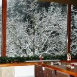 Let it snow! Χιονισμένα Χριστούγεννα στην Παύλιανη Φθιώτιδας!