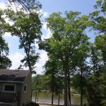 The Twin Lakes Lodge Foto