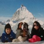 Foto do Matterhorn com o São Bernardo