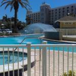 Brand New renovated Pool