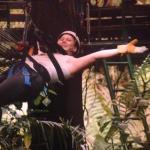 Rainforest Adventures Foto