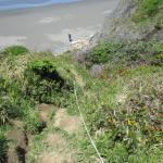 Otter Point State Recreation Site Foto