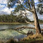 Tabilk Wetlands and Wildlife Reserve