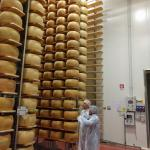 Frederico and my husband looking at the 40,000 wheels of cheese in storage for 2-3 years
