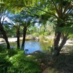 Go for a walk in the gardens at Mt Annan