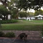 Laborie Wines Accommodation Foto