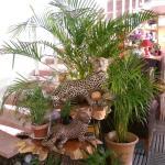 Photo of Cafeteria Cucurumbe