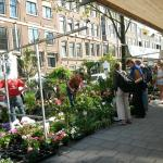 Lindenmarket (Saturdays)