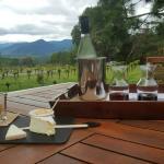 Wine + cheese tasting