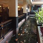 حوض الاسماك داخل المطعم