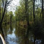 Photo of De Weerribben National Park