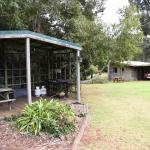 "Taken from the bbq area looking across ""wallaby & bird area"" to cabin 3 and it's picnic bench &g"
