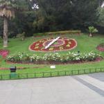 Flower Clock Vina Del mar