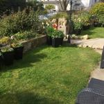 Beautifully kept front garden. Can't see the sea from the ground floor but you can hear it! Love