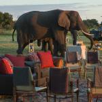 Sundowners at Abu Camp