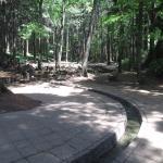 森林公園 水路
