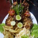 Shasha restaurant
