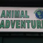 Animal Adventures Foto