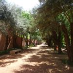 Cyber Park Arsat Moulay Abdeslam