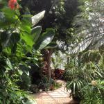 Foto de Highland Botanical Park and Lamberton Conservatory