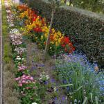 Jardin des plantes de Coutances