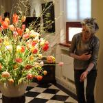 Beautiful Springtime Flowers - Frans Hals Museum, Haarlem