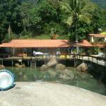 Este es el aquario natural que tiene el hostel, hermoso de día y de noche